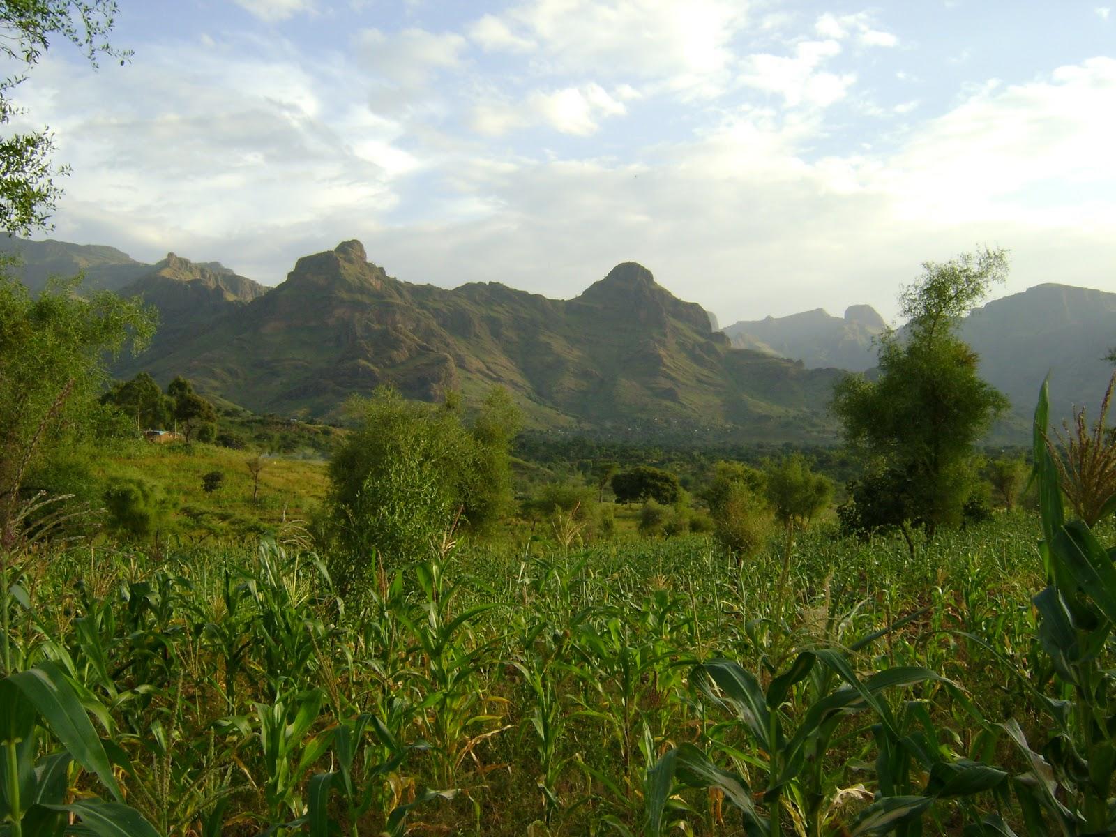صورك التي تبحث عنها في دارفور ستجدها هنا DSC00138