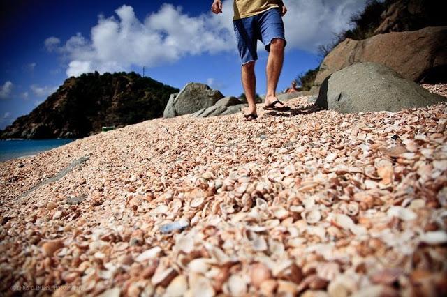 4 شواطئ صدفية مذهلة حول العالم St-bart-shell-beach-1%5B2%5D