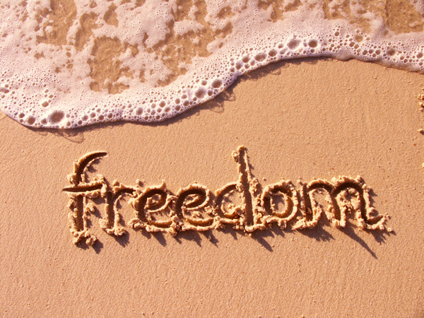Find the Cost of Freedom Freedom