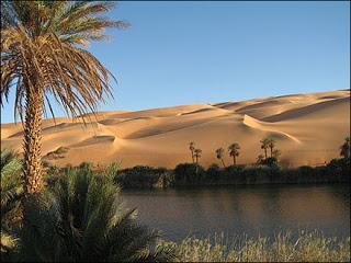 ♠ Quand  on est dans le désert ♠ ~Libre~ Un-oasis-source_aje