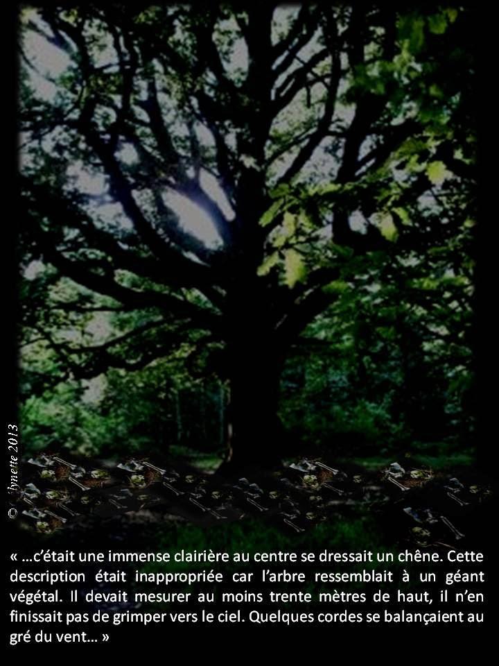 AB Story, Cirque:T24 ep7 p 51/E8 p 52/+E9 p 52 - Page 7 Diapositive9