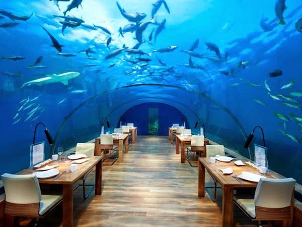 عشاء رومانسي في المالديف Image008-717799