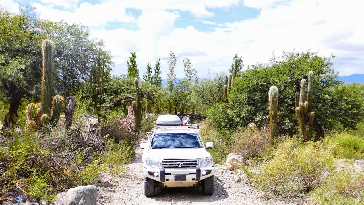 Adventure-Overland: Transafrica - Panamericana and next? P1070789