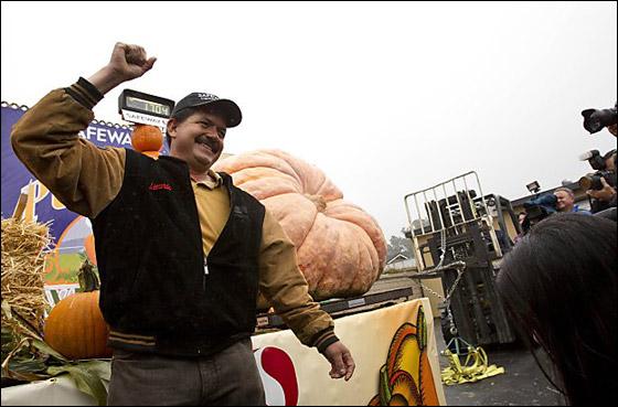 أمريكي يفوز بـ11 الف دولار بعد زراعته اكبر يقطينة تزن 773 كغم Biggest_Pumpkin_11