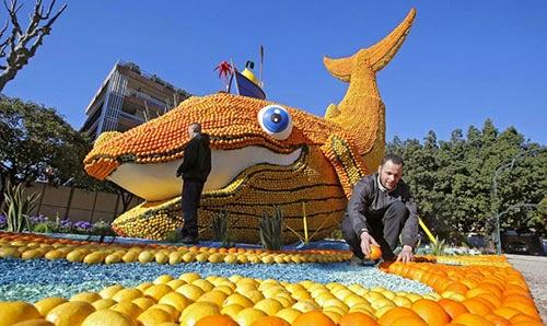 مهرجان الليمون والبرتقال في فرنسا 1