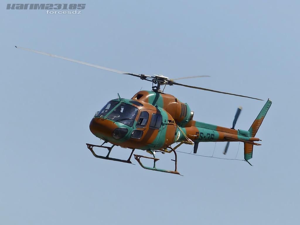 صور مروحيات القوات الجوية الجزائرية Ecureuil/Fennec ] AS-355N2 / AS-555N ] - صفحة 3 P1060382-2