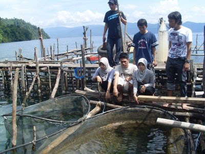 Biotopes and lakes of Sulawesi are in great danger. 1