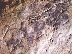 Cérvido grabado en roca de la Cueva de Doña Trinidad, Ardales  DescuNatug150906%5B1%5D