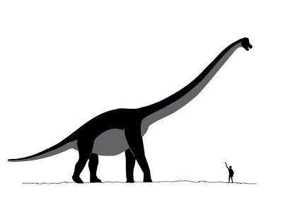 Algunos de los animales más grandes que han existido jamás Sauroposeidon-t7618