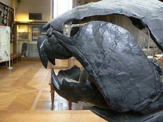 Los depredadores más temibles de la historia Dunkleosteous