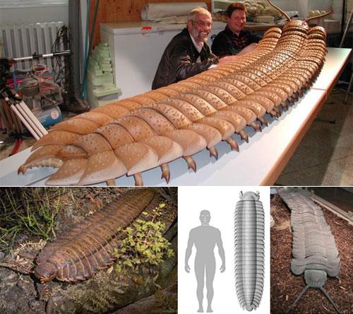 Algunos de los animales más grandes que han existido jamás Artopleura