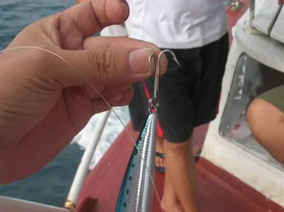 Forma utilizar las pinzas para quitar anzuelos triples de la boca del pez por José Manuel López Pinto DSCN0316