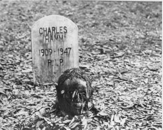 -Que coño harias en un apocalipsis zombie???- Living_dead