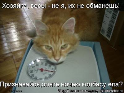 ДЕНЬ РОЖДЕНИЯ ФОРУМА! C0ae607fa774