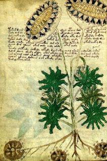 El Manuscrito Voynich - Realidad o Engano? Voynich