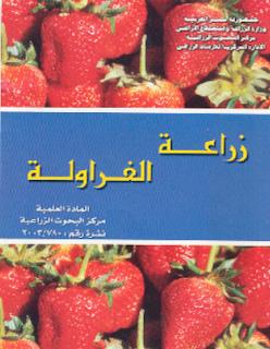 كتاب -  معلومات عن زراعة الفراولة . تحميل كتاب زراعة الفراولة %D8%A7%D9%84%D9%81%D8%B1%D8%A7%D9%88%D9%84%D8%A9