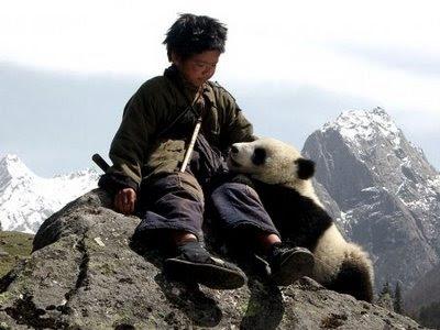 [Walt Disney Pictures Chine] Trail of the Panda  (2009) Panda