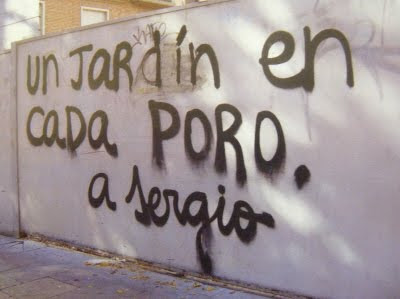 La mujer portuguesa - El topic del Niño Gusano... DSCF4005