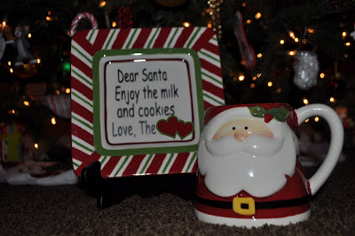 Cookies and Milk for Santa DSC_1961