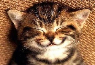 Simplesmente Te Amo!!! - Página 3 Smile1-main_Full