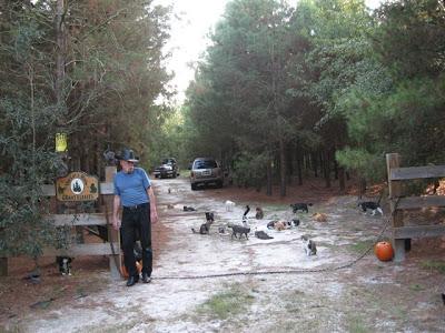 Un pueblo para 500 gatos Ac-1