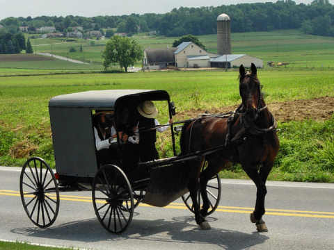 Conduire sans voiture et sans essence. Amish2