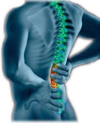 முதுகுவலிக்கு முறையற்ற இயக்கமே காரணம் Back-pain1