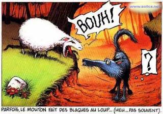 Sagesse du pluvian - Page 8 Mouton21