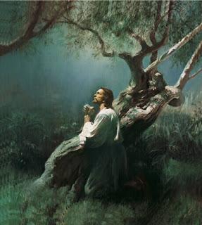 ஏசு என்ற ஒரே கிறிஸ்துவர் Jesus-christ-mormon
