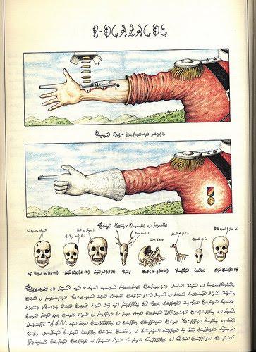 El Manuscrito Voynich - Realidad o Engano? 231244621_5bd2a198b4