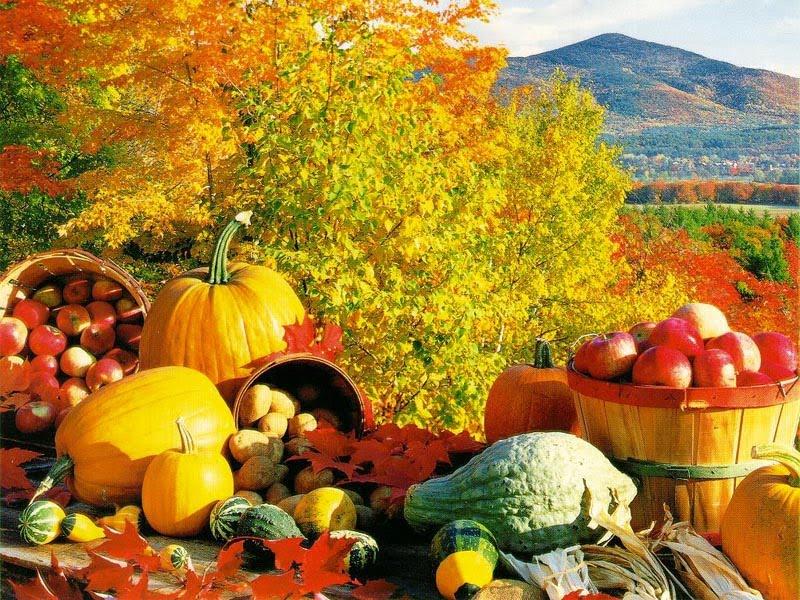 ... Y caen las hojas, llega ....¡¡¡ EL Otoño !!! FallHarvest_2