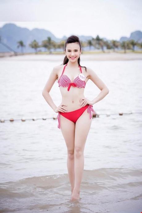 (TỒNG HỢP) Những ứng viên sáng giá cho vương miện Hoa hậu Việt Nam 2016 16_59166