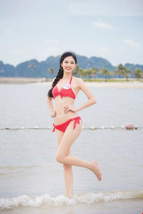(TỒNG HỢP) Những ứng viên sáng giá cho vương miện Hoa hậu Việt Nam 2016 1_55756