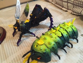[Fanstoys] Produit Tiers - Jouet FT-12 Grenadier / FT-13 Mercenary / FT-14 Forager - aka Insecticons - Page 4 UY8QuxeO