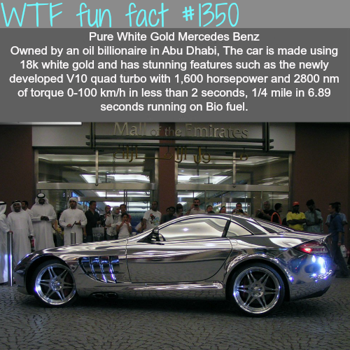 WTF (because you need useless info) Tumblr_ml4eobJqDM1roqv59o1_500