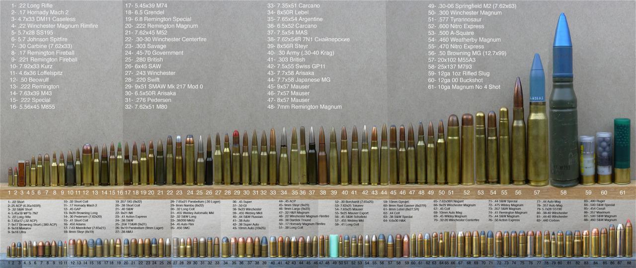 Comparatif géant de munitions Tumblr_mjnvxfyaZQ1s6y8k6o1_1280