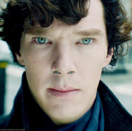 Sherlock - BBC [2] - Page 4 Tumblr_mik6dmGGxN1qewsw4o1_500