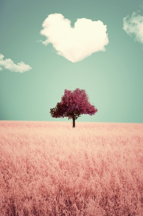 **hola primavera** Tumblr_mfszccpNga1rnkoado1_500