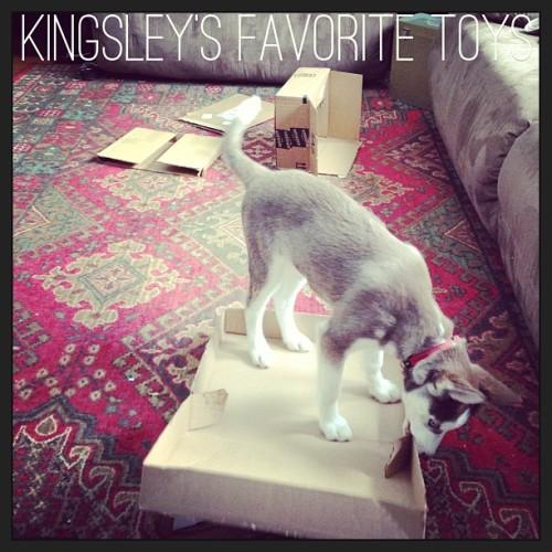 Kingsley's Scrapbook UPDATE 8/1*  Tumblr_mj1lb2XxY81qb08cao1_500