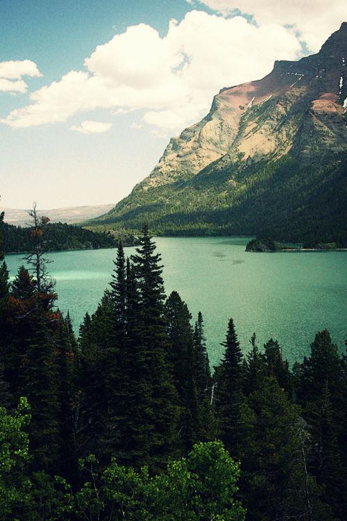 Peisaje... - Page 11 Tumblr_myjsbcEQTI1t4zg3go1_500