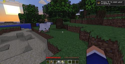 Minecraft! Tumblr_n26ghu32e31tvpg2mo7_500