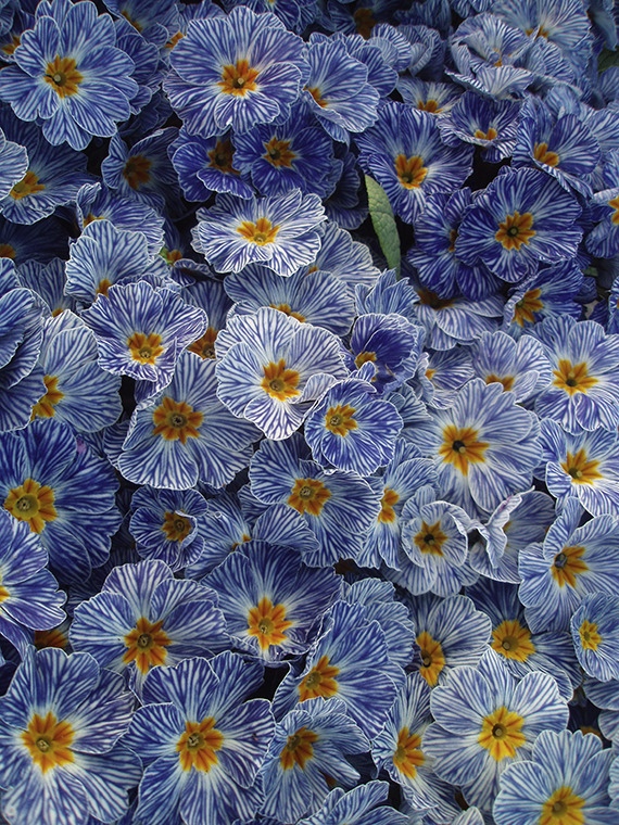 Volim plavo - Page 21 Tumblr_mxdt82Ilo31sbz1hoo1_1280