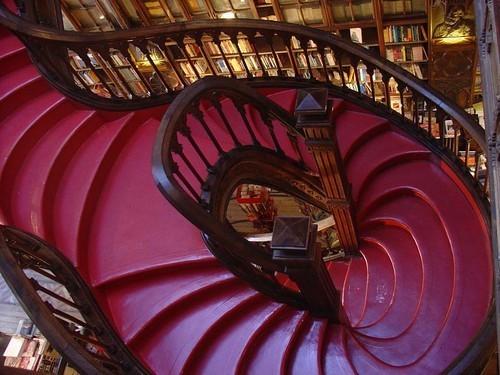 Najlepše biblioteke na svetu Tumblr_kp791iiy4h1qzed32o1_500