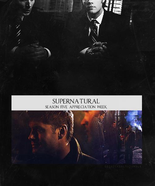 Реклама - Страница 2 Tumblr_ls1yikVq5I1qk0nd4o1_500