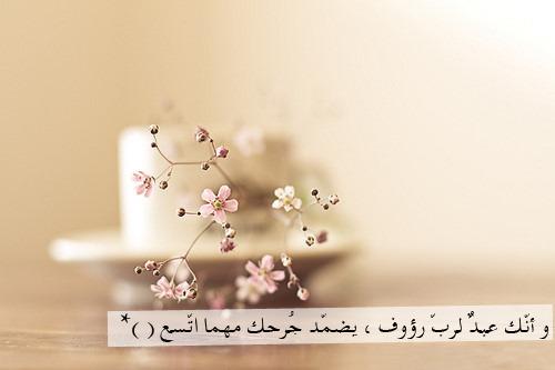 لاتظنوا انكم مسلمين ياشيعة ،ياعلويين ، ياروافض Tumblr_m13983lIxQ1qf41e7o1_500