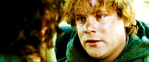 Lord of the Rings. - Page 5 Tumblr_m2n85eT6iK1qed5gvo1_500