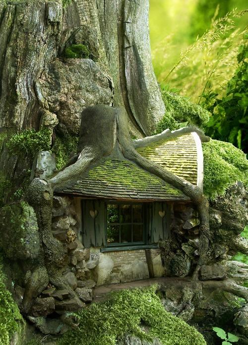 Habitats alternatifs, cabanes et huttes Tumblr_m90bbqrpe61qb30dwo1_500