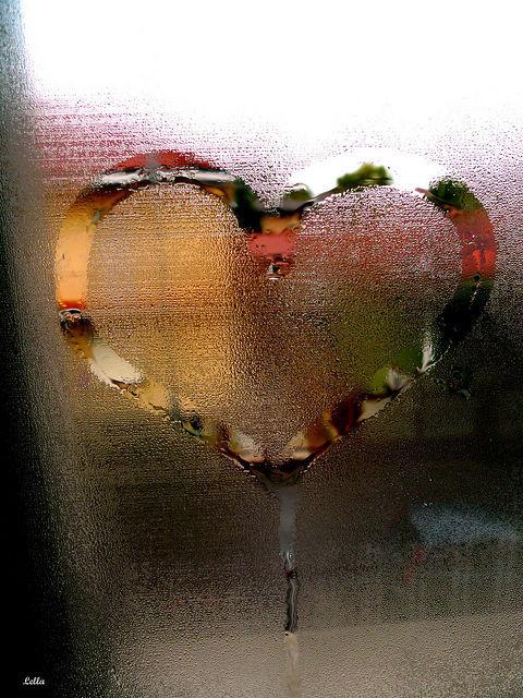 Donde estas corazón. - Página 3 Tumblr_mbhpzh644C1qku4vyo1_500