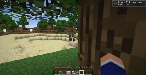 Minecraft! Tumblr_n26ghu32e31tvpg2mo5_500