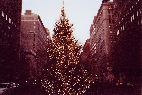 Christmas! Tumblr_meuiiw12Tp1r5xup0o1_500